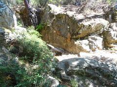 Arrivée à la confluence Velacu : branche Carciara