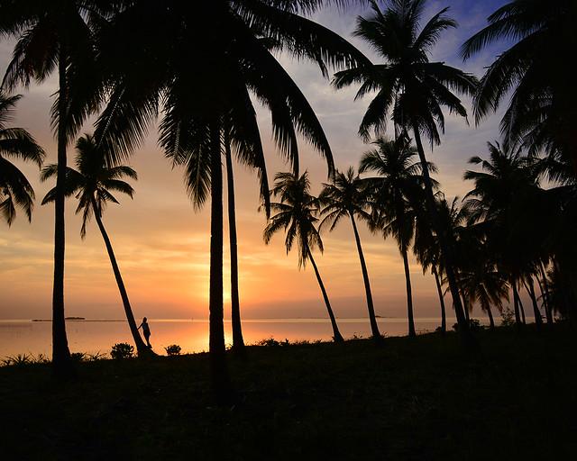 Otro mágico atardecer de naranjas y dorados sobre palmeras en Filipinas