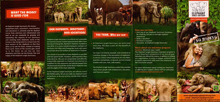 Elephant Jungle Sanctuary Chiang Mai Thailand Brochure 4