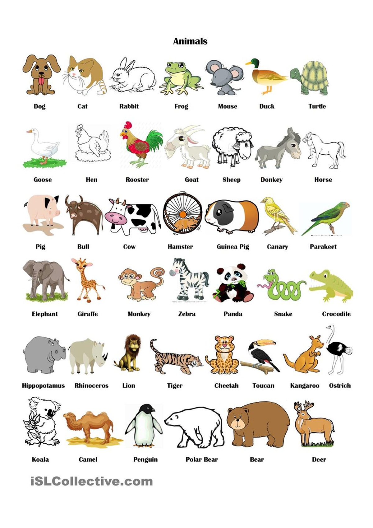 "Vocabulary: ""ANIMALS"" 3"
