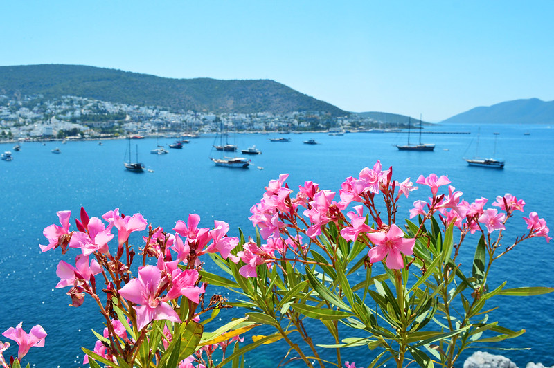 Panorama view of Bodrum