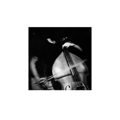 Contrabass Photos On Flickr | Flickr
