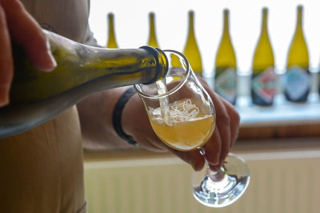 Cata de cerveza en Lovaina (Flandes)