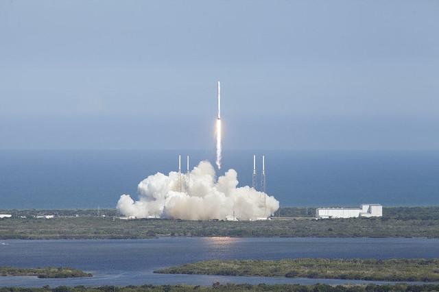 spacex-cohete