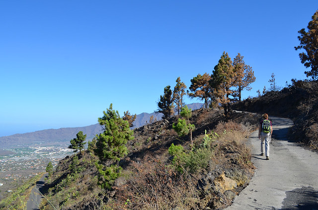 Checking fire damage, La Palma