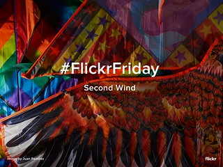 Flickr Friday - Second Wind | by Flickr