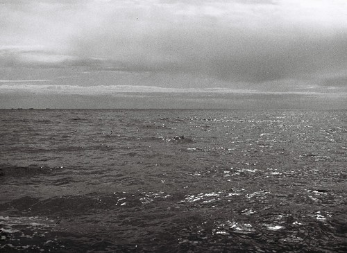 Ocean via grainy film | by Matthew Paul Argall