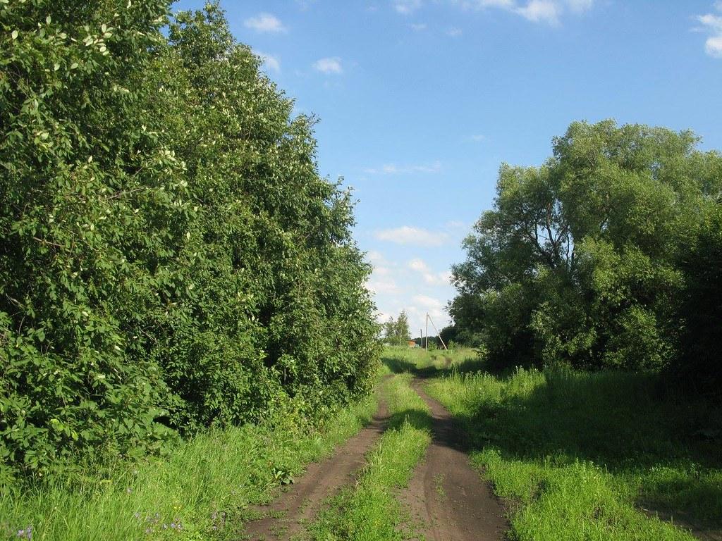 Дорога на речку