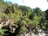 Vue de la RG entre la brèche et la confluence Frassiccia : c'est là que passe le chemin d'exploitation en hauteur !
