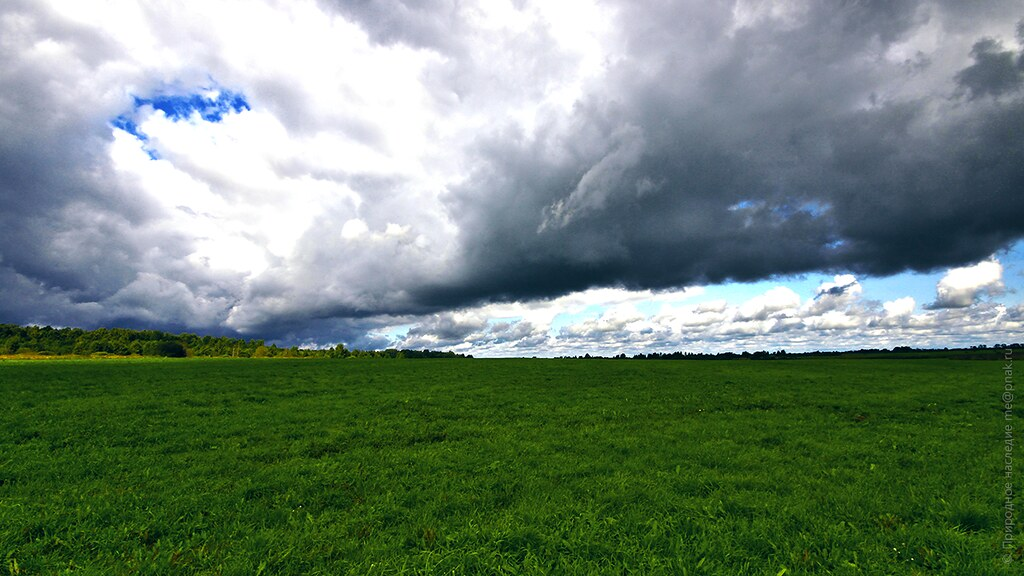 Green-grass field, sky and clouds