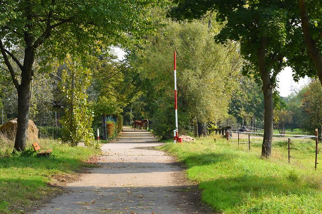 Ein sonniger Septemberspaziergang auf der Mannheimer Maulbeerinsel ... Brigitte Stolle 2017