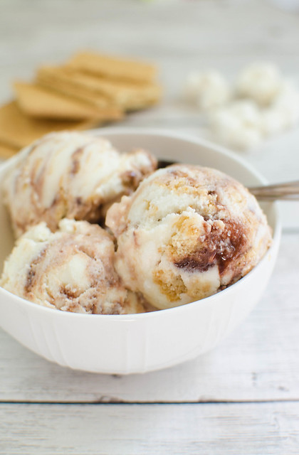S'mores Frozen Yogurt
