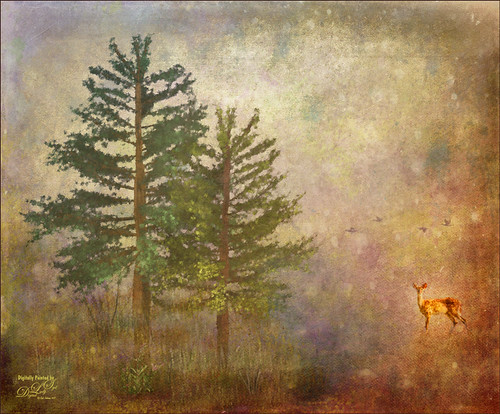 Digital Art image of fur trees and a deer