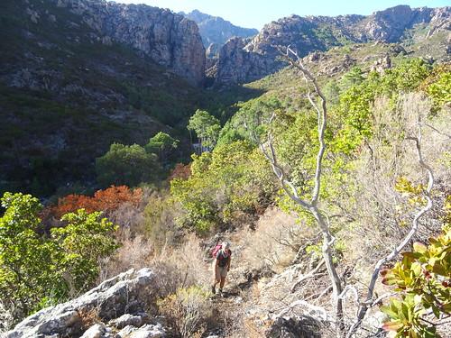 Retour sur le chemin de Paliri après la descente de la Carciara
