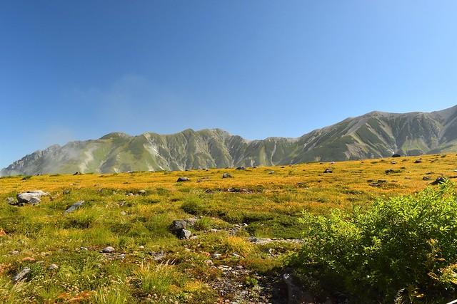 立山と室堂の草紅葉