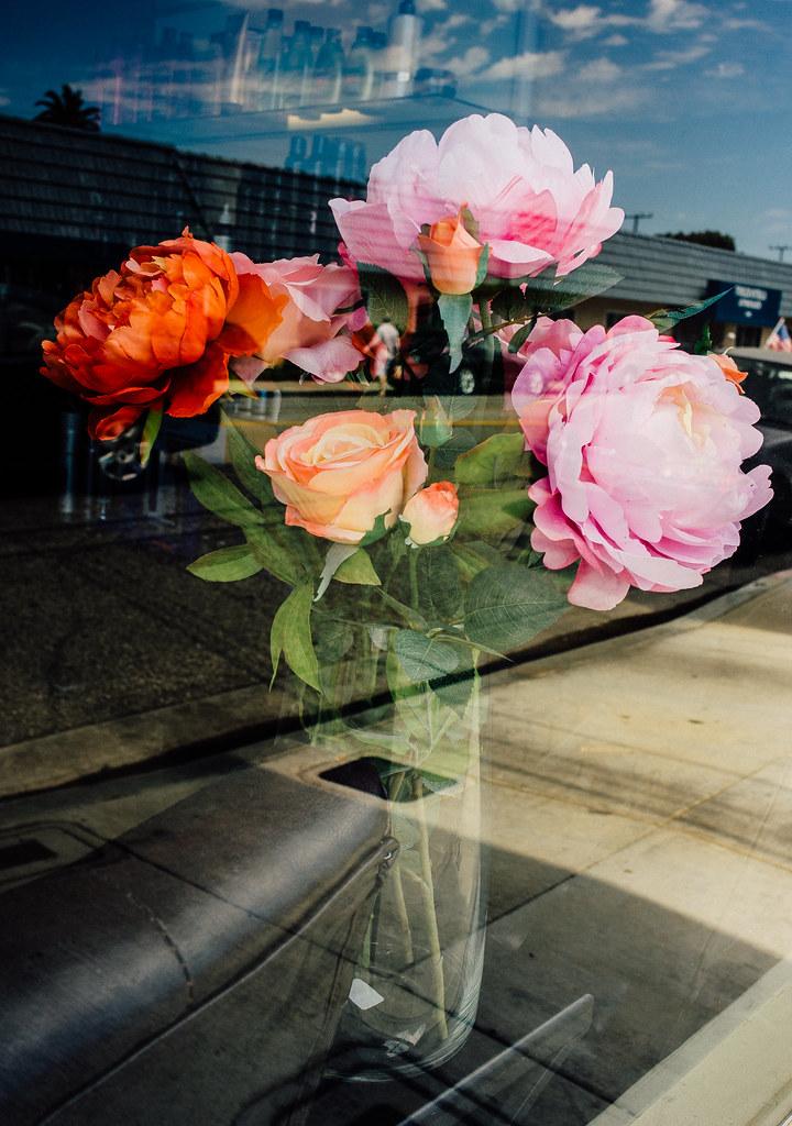 Flowers | by michaelj1998