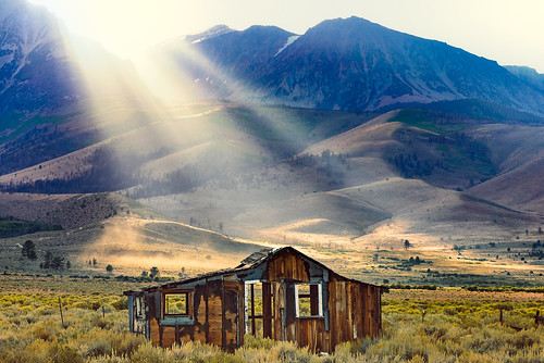 Sunbeams and That395House | by pixelmama