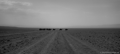 Gobi Loop-27 | by Worldwide Ride.ca