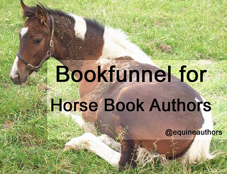 Bookfunnel for Horse Book Authors @equineauthors