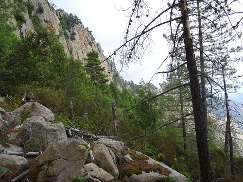 La traversée infernale sous les parois contreforts de Pta di San Gio Agostinu : le début dans les bruyères et les ronces