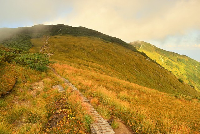 紅葉の大日岳の稜線