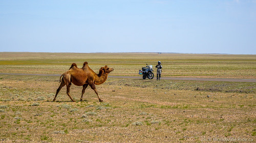 Heading South Mongolia-4 | by Worldwide Ride.ca