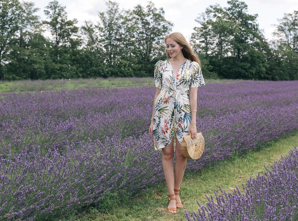 Terre Bleu Lavender farm near toronto