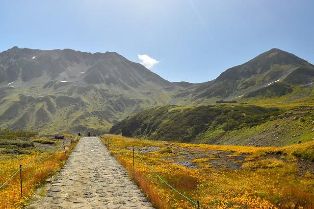 北アルプス 立山登山