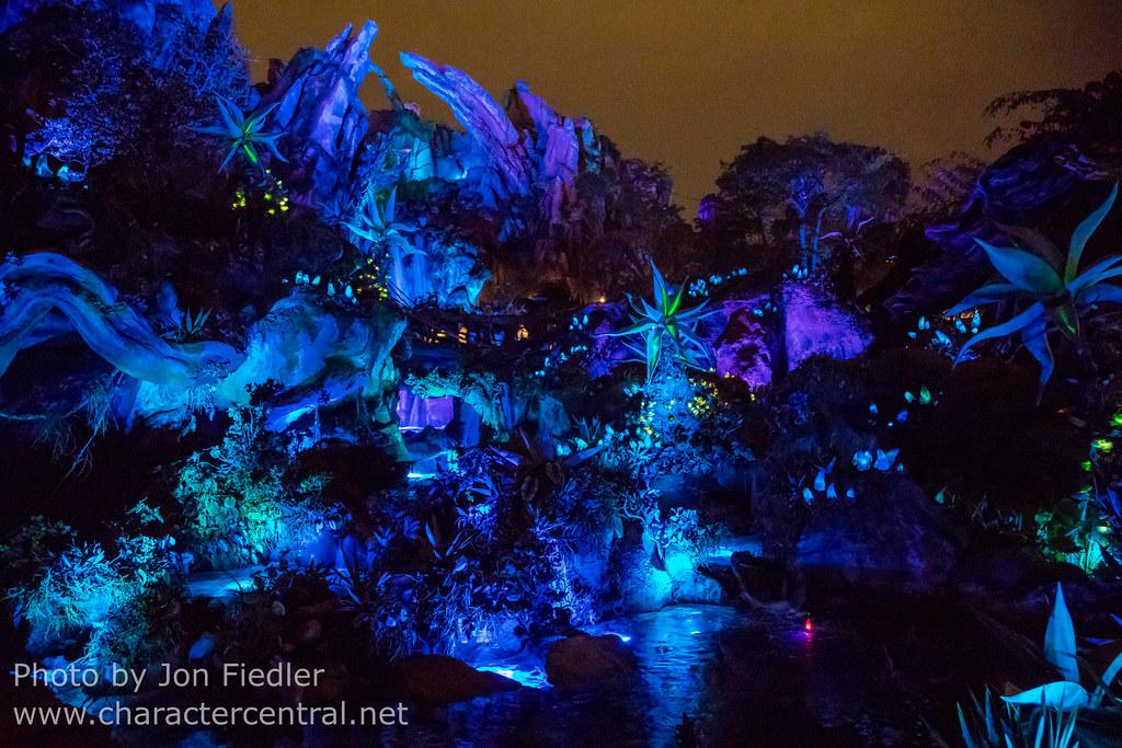 Disneyland Florida Animal Kingdom Hotel