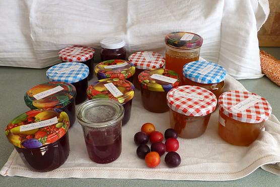 Wildfrucht ... Kirschpfalume, Türkenkirsche, Därgelkersch ... Marmelade ... Foto: MH
