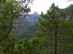 Le Castedducciu depuis le chemin en versant SW de Bocca di Ricu
