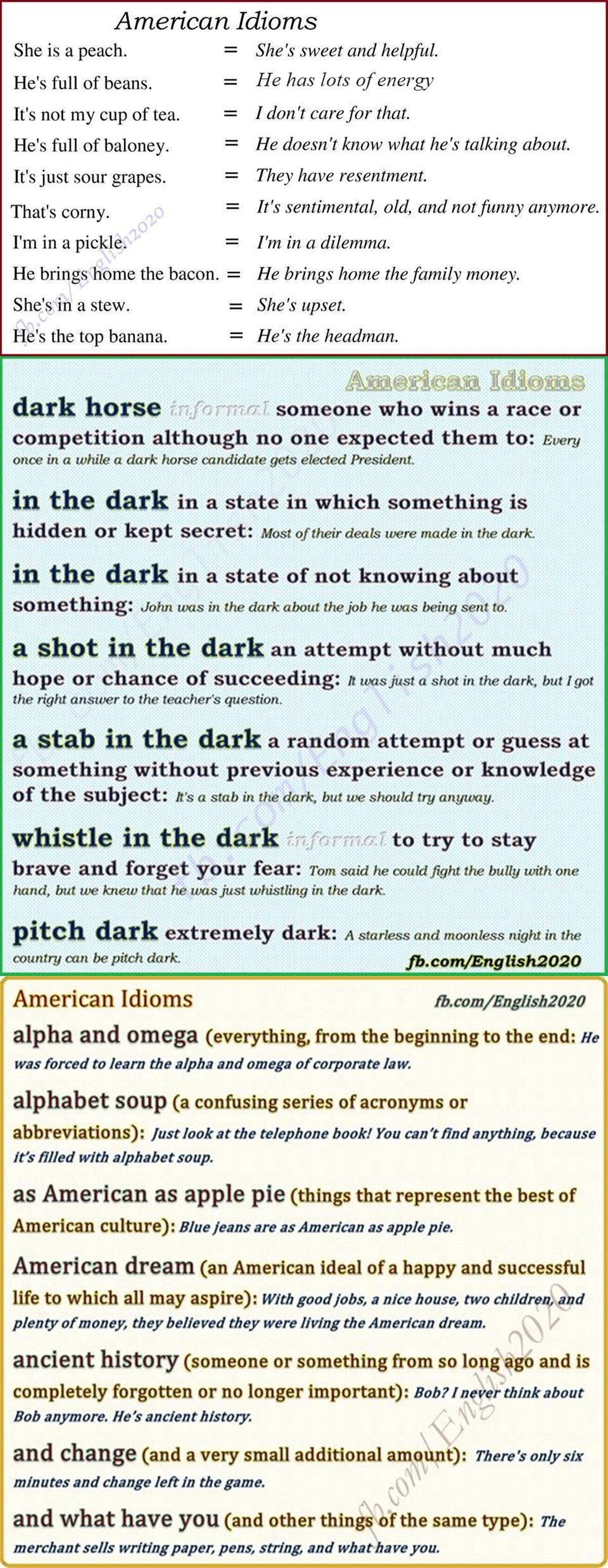 American Idioms 3