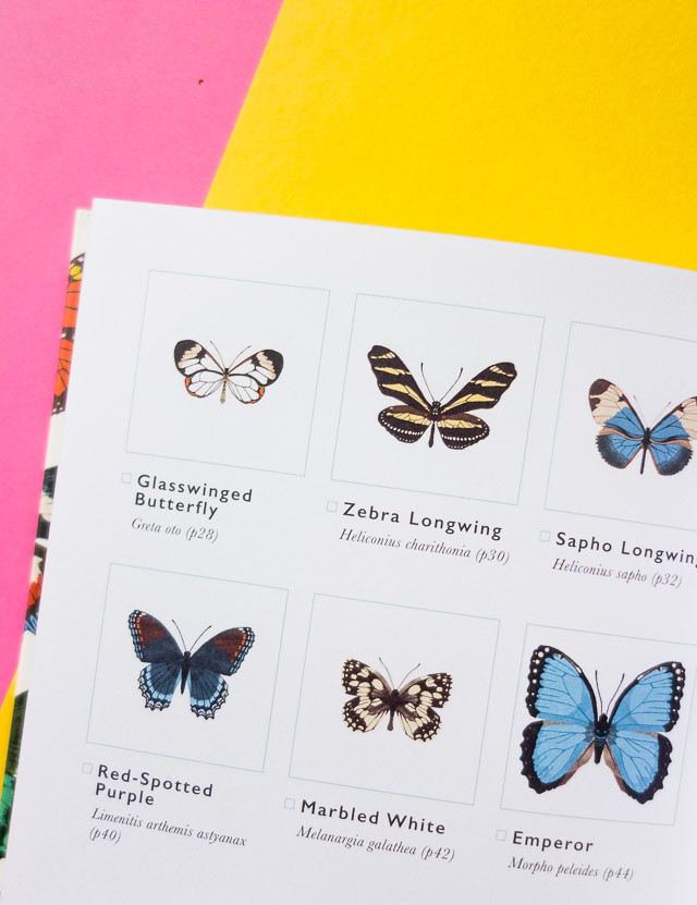 the little guide to butterflies spotters guide