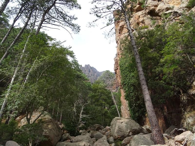 Traversée du ravin de Funtana Russa