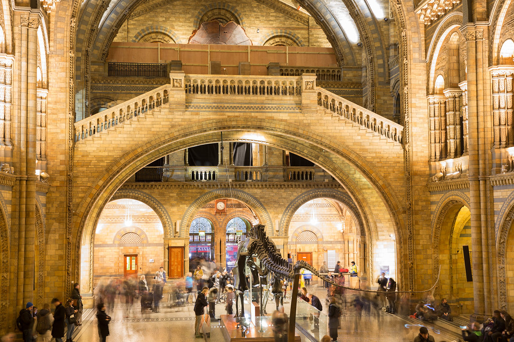 Foyer Museum London : Entry hall of natural history museum london 📷 stock