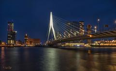 Rotterdam, Erasmusbrug en Skyline