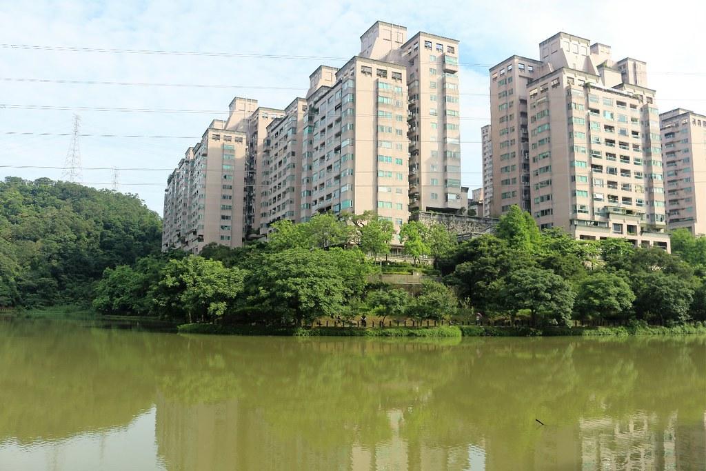 汐止區的金龍湖緊鄰住宅區。攝影/楊孟軒