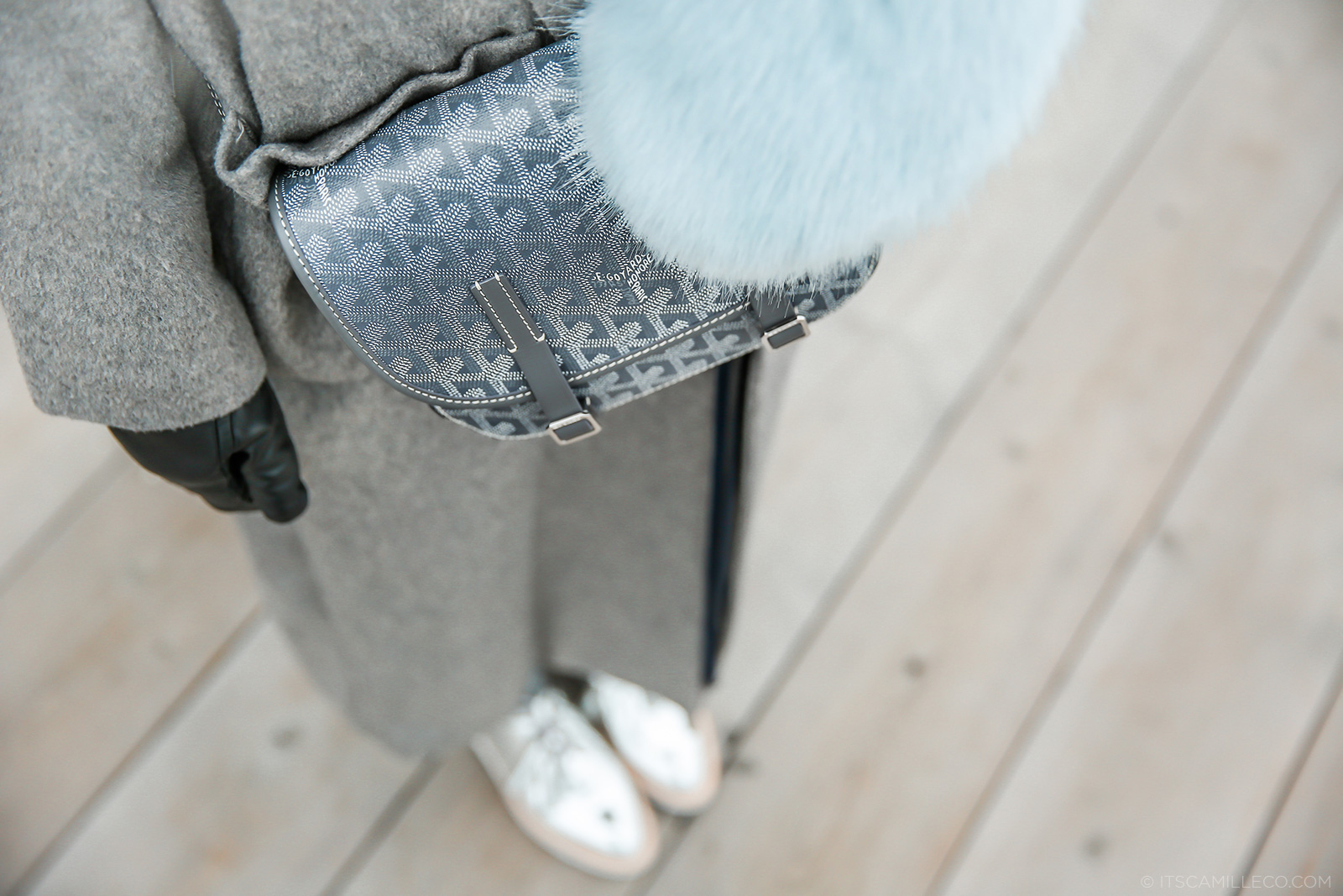 Goyard bag - Camille Co