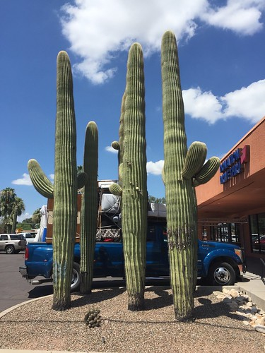 Thrift shop junkin' in Tucson | by searchnetmedia