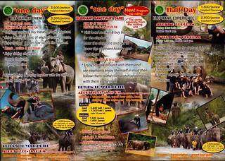 Eddy Elephant Chiang Mai Thailand Brochure 2