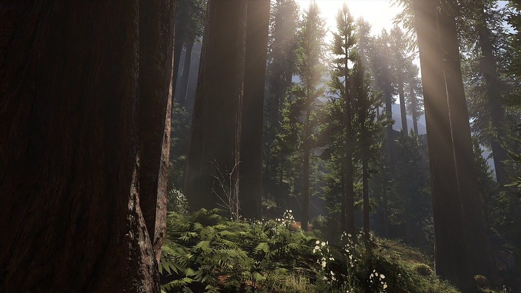 Image result for red dead redemption 2 environment