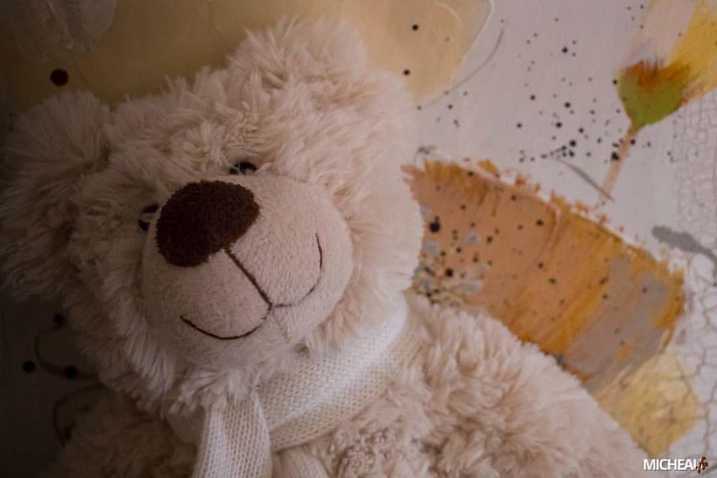 teddybear un des deux squatteurs de mon salon 😆 - - - #p…   Flickr