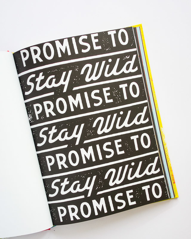 promise to stay wild - dan cassaro