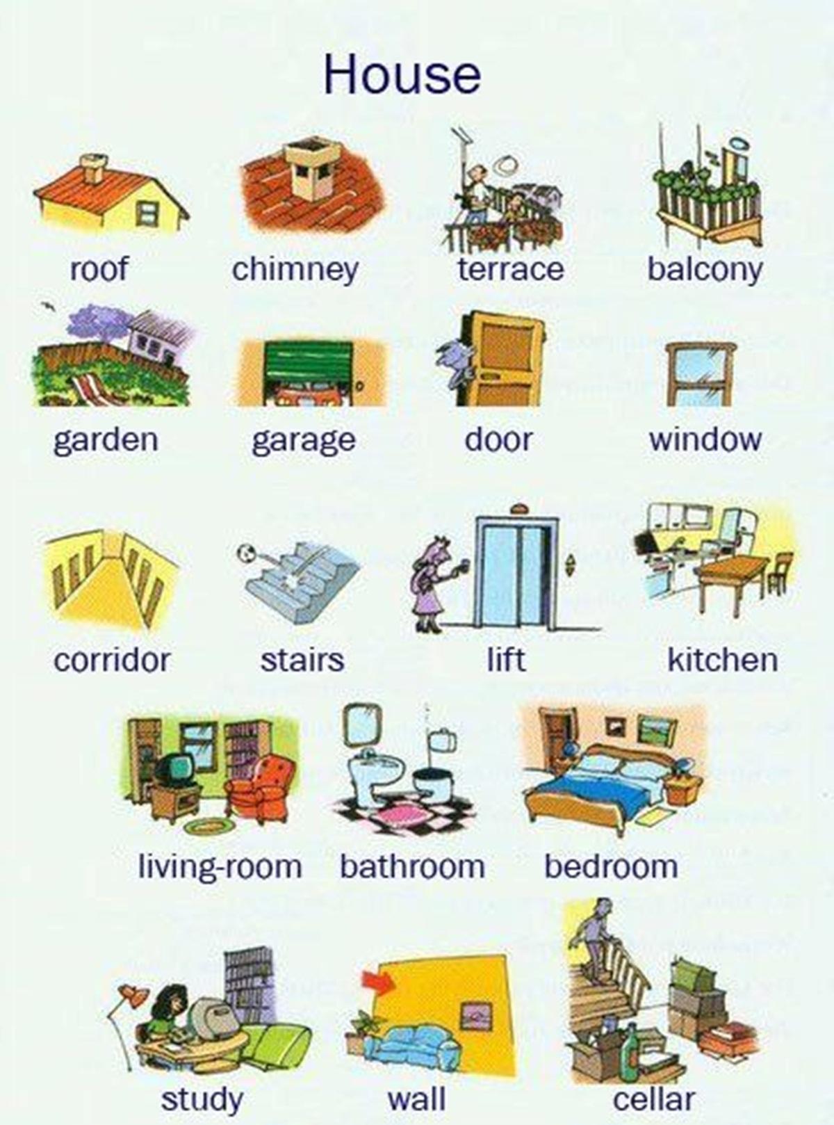 Vocabulary: Around the House 3