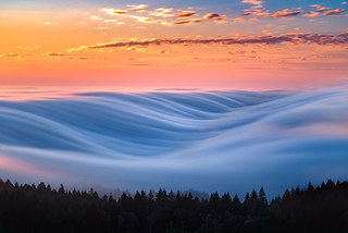 Fog Wave | by pixelmama