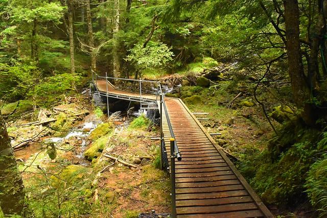 八ヶ岳登山 南沢の橋