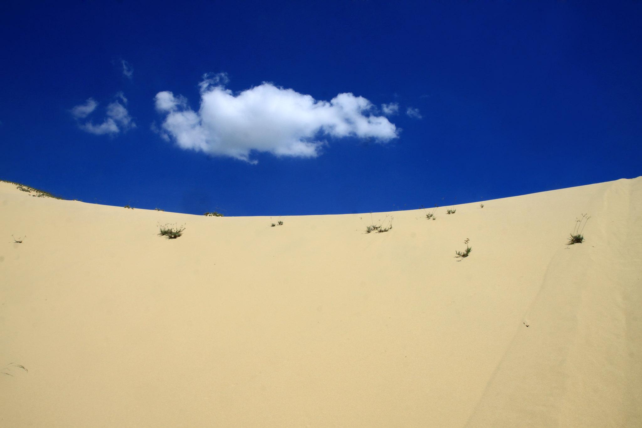 Cồn cát Quang Phú vào buổi sáng
