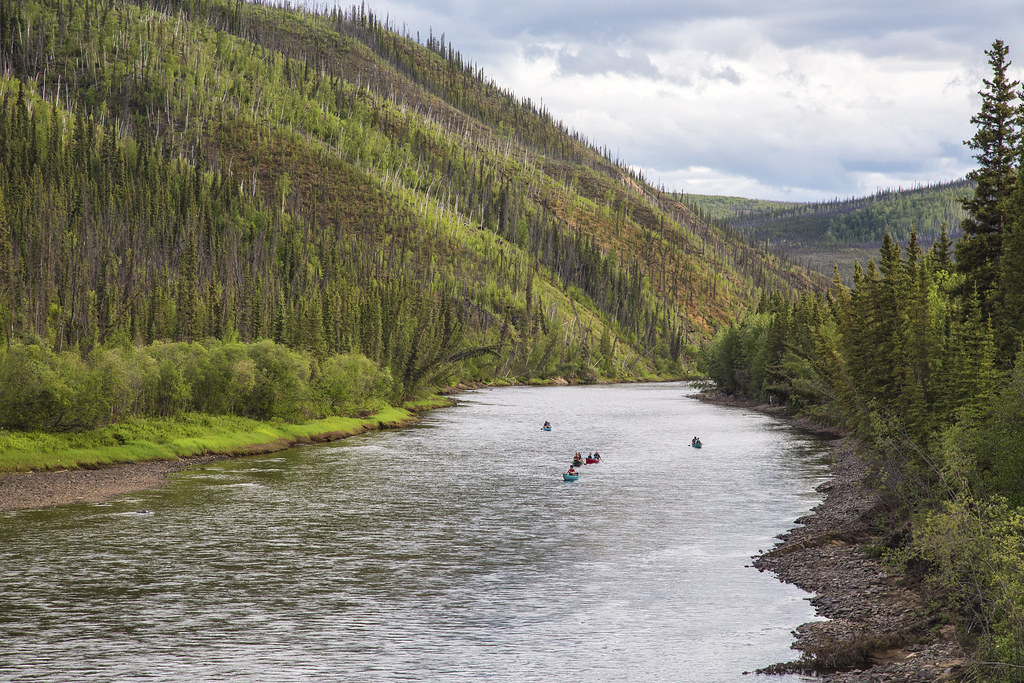 fortymile wild and scenic river alaska the fortymile rive flickr