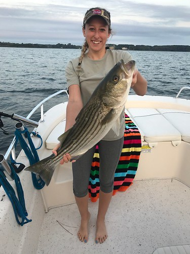 Photo angler Samantha Bartell holding a striped bass