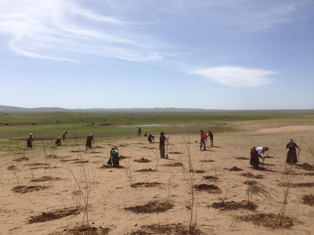 麥溪鄉是巴讓的家鄉,若爾蓋草原上沙化最嚴重的地方。若不加治理,這一世界上最大的高原濕地將變成世界上海拔最高的高原沙漠。圖片來源:扎瓊巴讓